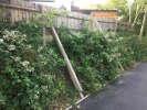Verge failing, fence falling over